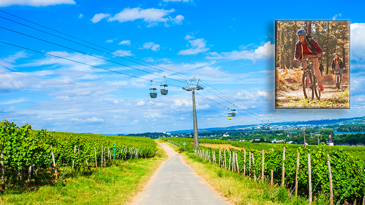 Ruedesheim Biking Trip (Self-Drive)